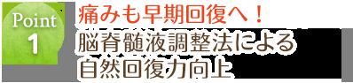 熊本県内ではグループ院のみ脳脊髄液調整法による自然回復力向上