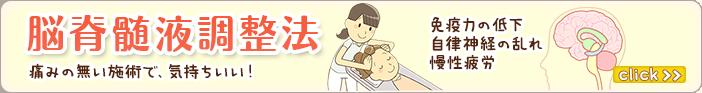 脳脊髄液調整法